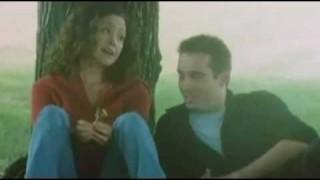 Ludo zaljubljeni (2005)