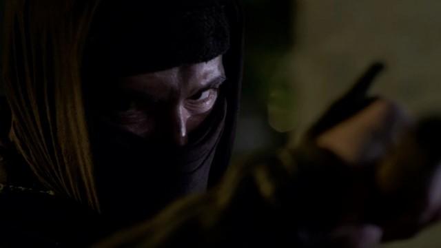 Ninja: Shadow of a Tear (2013)