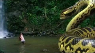 Piranhaconda (2012)