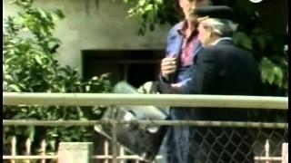 Skretnicar (1984) ceo film