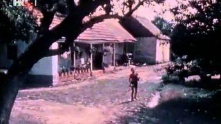 Hildjegard 1983