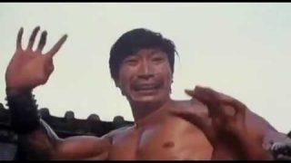 Jackie Chan Kobra Filmovi sa prevodom