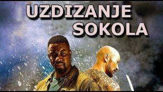 Uzdizanje sokola (2014) – akcioni film