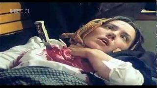 Đavolje sjeme (1979 Tv serija) Prvi i drugi deo