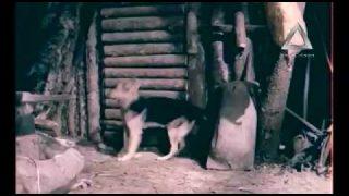 Balada o svirepom – Ceo film